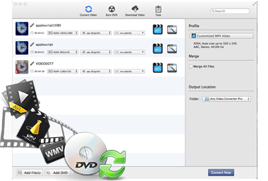 All-in-one Video Converter & DVD Converter